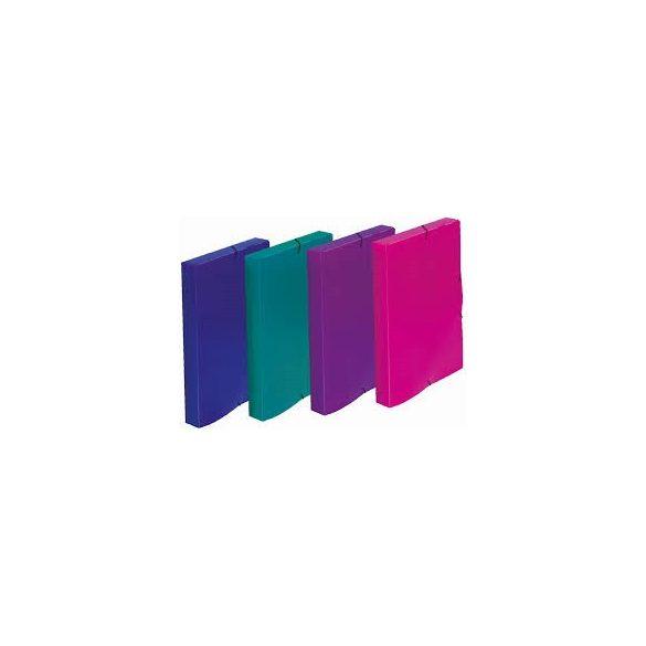 FÜZETBOX ELECTRA A4 (Műanyag) - Több színben